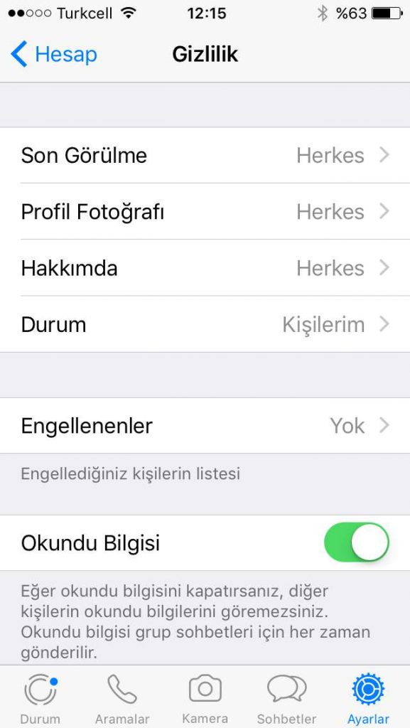 Whatsapp Çevrimiçi Gizleme